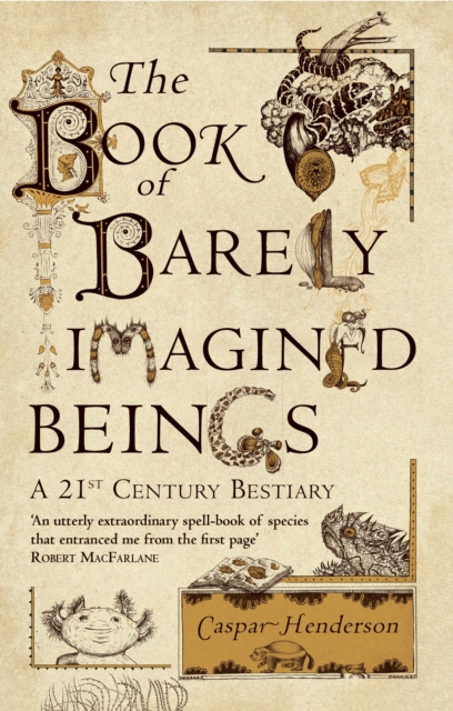 The Book of Barely Imagined Beings by Caspar Henderson | 9781847082442