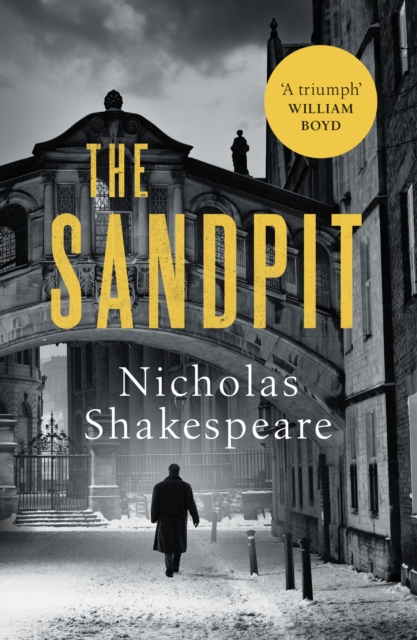 The Sandpit by Nicholas Shakespeare | 9781529111842